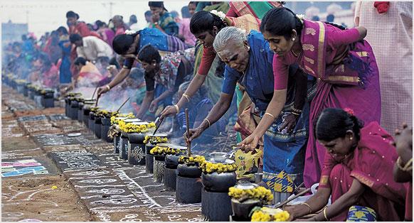 Image result for celebrations of pongal festival